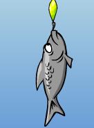 gray-fish